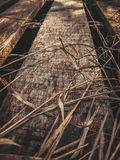 Een houten brug in het gras Stock Foto's