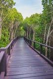 Een houten brug in het midden van een mangrovebos met mooie hemel royalty-vrije stock afbeelding