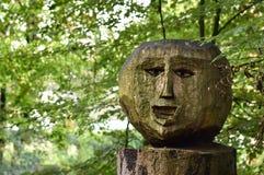 Een houten hoofd in het meest forrest Royalty-vrije Stock Fotografie