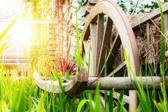 Een houten karwiel in het landbouwbedrijf dichtbij de boom met zonlicht royalty-vrije stock foto's
