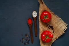 Een houten lepel en ingrediënten op een donkerblauwe achtergrond Het concept kruidig voedsel en culinaire ketchup, lege ruimte vo Royalty-vrije Stock Foto