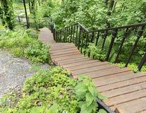 Een houten trap in het bosje, een parkweg gaat onderaan de helling Royalty-vrije Stock Foto's