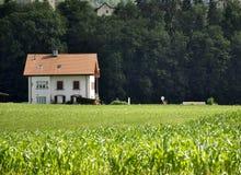 Een huis in het midden van groen Stock Fotografie