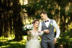 Een huwelijkspaar geniet van lopend in het hout De jonggehuwden koesteren en houden handen stock foto's