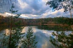Een idyllisch meer in het bos stock afbeeldingen