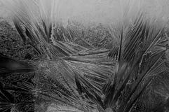 Een ijzig beeld op een venster Royalty-vrije Stock Foto's