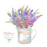 Een illustratie met een boeket van mooie waterverf heldere lupine bloeit in een rustieke kruik Stock Afbeelding