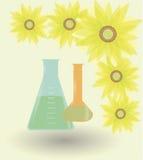 Zonnebloem-biofuel Stock Foto's