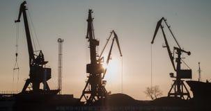 Een industriële overzeese terminal met ladingskranen en de auto's van de spoorwegcontainer op zonsopgang Grote kranen in haven Ku stock videobeelden