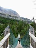 Een interessante mening van een vrouwelijke wandelaar die terug kijken aangezien zij een hangbrughoogte in de verre bossen van de stock foto's