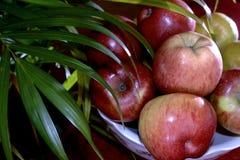 Een inzameling van appelen stock fotografie