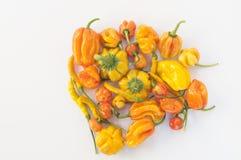 Een inzameling van gele en oranje chilis, Royalty-vrije Stock Foto