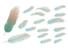 Een inzameling van veren Stock Foto's