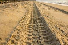 Een ire spoor in geel zand op het oceaanstrand stock foto's