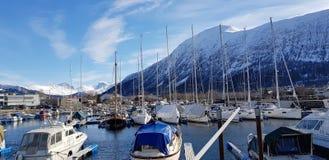 Een jachthaven in een mooie fjord stock afbeelding