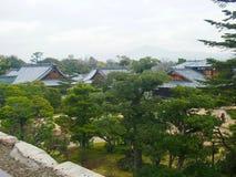 Een Japans arboretum, botanische tuin met groene bomen stock foto