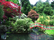 Een Japanse tuin Stock Fotografie