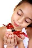 Een jong meisje dat een mooie rode vlinder bewondert royalty-vrije stock afbeelding