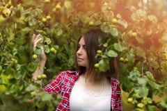 Een jong meisje zit in openlucht op het gras in een boom, ziet het broeden, een de zomerdag in openlucht eruit in het Park Stock Foto's