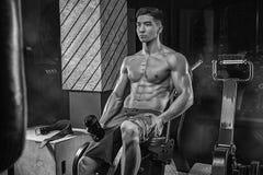 Een jonge Aziatische atleet is een bodybuilder weightlifter, met goed-v stock afbeelding