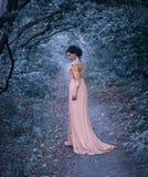 Een jonge donkerbruine vrouw met elegant, kapsel Een prinses in een gele uitstekende kleding, tribunes tegen de achtergrond van royalty-vrije stock foto