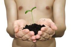 Handen van landbouwer Stock Afbeeldingen