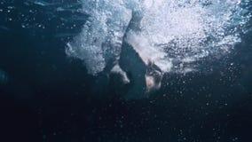 Een jonge jongen in het zwembad stock videobeelden