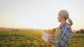 Een jonge landbouwer met een doos van groenten gaat over het gebied landbouwproducten stock videobeelden