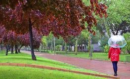 Een jonge meisjesgangen alleen op een regenachtige dag door een park onder een paraplu stock fotografie