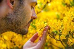 Een jonge mens die van het aroma van de lentebloesem genieten van heldere yello stock afbeeldingen