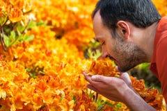 Een jonge mens die van het aroma van de lentebloesem genieten van heldere yello royalty-vrije stock fotografie