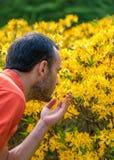 Een jonge mens die van het aroma van de lentebloesem genieten van heldere yello royalty-vrije stock foto's