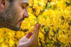 Een jonge mens die van het aroma van de lentebloesem genieten van heldere yello royalty-vrije stock foto