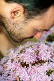 Een jonge mens die van het aroma van het roze van de de lentebloesem genieten bloeit S stock foto