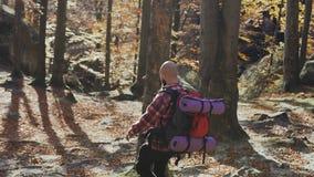 Een jonge mens met een baard daalt van de bergen Een toerist met een rugzak op zijn schouders De reiziger ging op a stock videobeelden