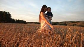 Een jonge moeder en haar zoon die op een tarwegebied bij zonsondergang lopen stock footage