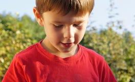 Een jonge tevreden jongen op een de zomerdag Stock Foto's