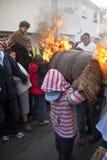 Een jonge vatrol neemt de menigte door Royalty-vrije Stock Afbeeldingen