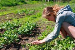 Een jonge vrouw in de tuin Stock Afbeeldingen