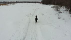 Een jonge vrouw die een paard berijden op een sneeuwgebied Achter mening stock videobeelden