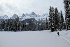 Een jonge vrouw die rond Eilandmeer snowshoeing in Fernie, Brits Colombia, Canada De majestueuze de winterachtergrond is schitter stock foto's