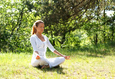 Een jonge vrouw die yoga in een groen bos doet Royalty-vrije Stock Foto