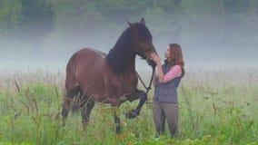 Een jonge vrouw die zich naast een paard bevinden en zijn hoofd in aard strijken, rond de mist stock footage