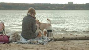 Een jonge vrouw in een laag zit op het strand door de rivier, oceaan, heeft een picknick, dichtbij speelt een bruine hond, koud w stock videobeelden