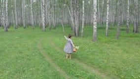 Een jonge vrouw loopt door een en berkbos die verheugen omcirkelen zich Luchtfotografie van quadcopter stock footage