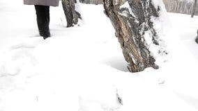 Een jonge vrouw loopt merrily en onbezorgd door de losse sneeuw rond een boom in een de winterpark stock footage