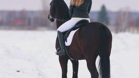 Een jonge vrouw met lang haar die een paard in een dorp berijden Status op sneeuwgrond Achter mening stock video