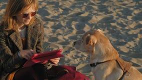Een jonge vrouw op het strand door de rivier gebruikt een computertablet en voedt een bruine lobrodorhond o stock videobeelden