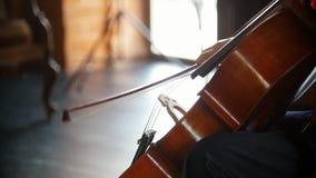 Een jonge vrouw speelt de cello - de boog loopt regelmatig langs de koorden stock video