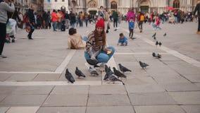 Een jonge vrouw zit in het vierkant in publiek Het voeden van de duiven stock footage
